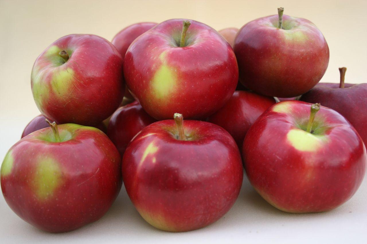яблукa #ЕкоВіста у мережі #NOVUS, #ВеликаКишеня та #Велмарт.